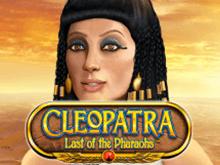 Игровой автомат Клеопатра – Последняя Из Фараонов порадует и новичков, и опытных игроков